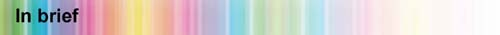 heading4inbrief